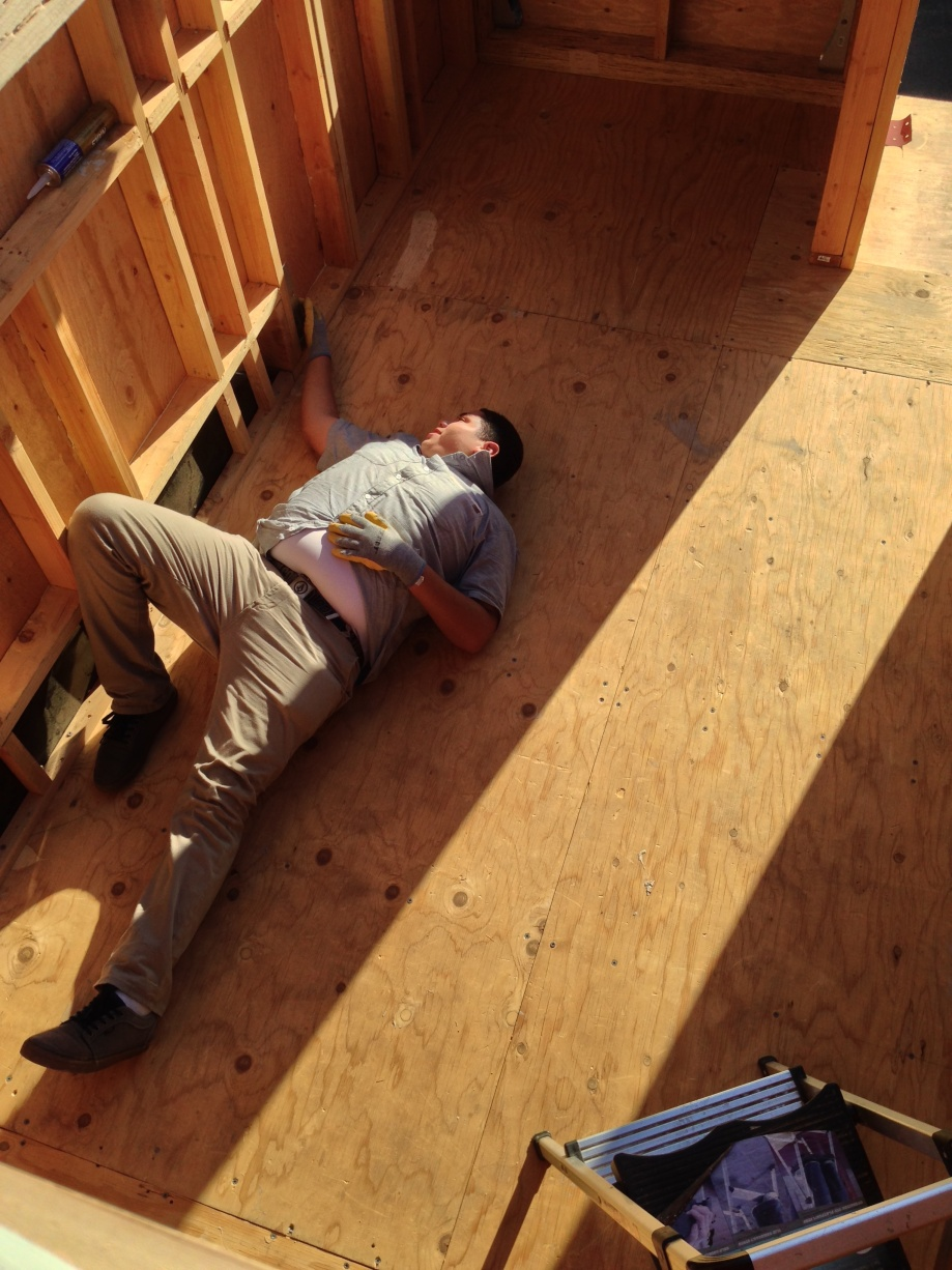 after a long day of sanding and lifting , my buddy needs a  little nap on my tiny house floor